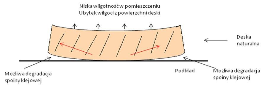 stabilparkiet_parkiet_komplex_12